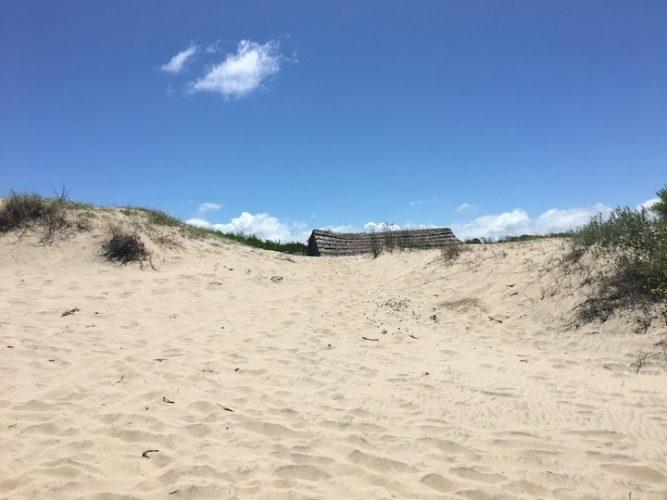 Surprises in the dunes