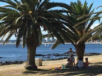 Punta del Este picnic